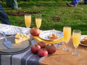Klein_Saft Kuchen Äpfel